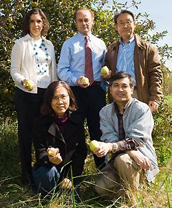 A research group that has received a long-term grant to study the fire blight disease that affects apples and pears is pictured in an orchard. Front row (from left): Hyungsoo