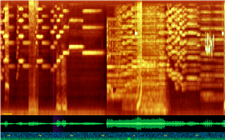 A screenshot of the timeliner. The orange lines across the top show an orchestral recording. A robin chirping, a bell dinging, and a video-game sound effect cause unusual shapes within the spectrogram.